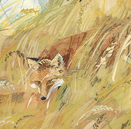 Fox in grass, red fox in grass, red fox painting, red fox hiding, red fox face