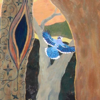 bluejay in flight, fairytale bird