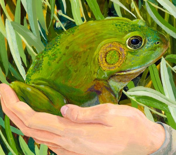magic frog, enchanted frog, magic toad, enchanted toad, feminist fairy tale painting, enchanted prince