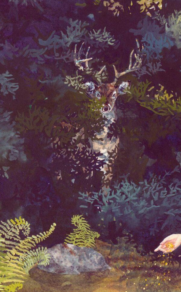 hidden stag, hidden deer, deer hiding, guardian stag