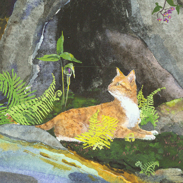 marmalade cat, wisewoman's cat, reclining cat, cat in ferns, cat in bracken