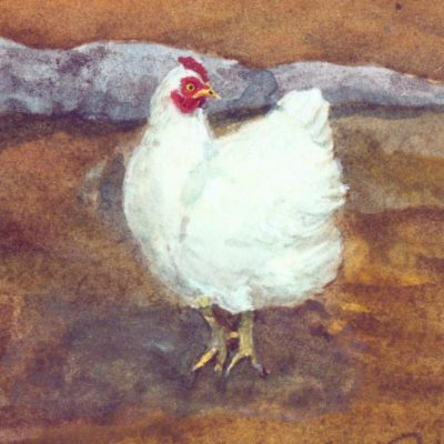 white hen watercolor detail