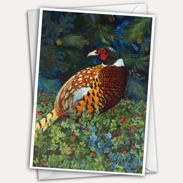 Ring necked pheasant sitting in winter evergreens with red berries greeting card, christmas card, holiday card